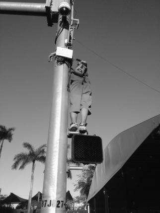 climbing streetlights