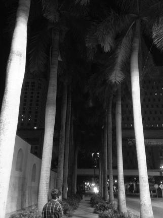 walking home miami